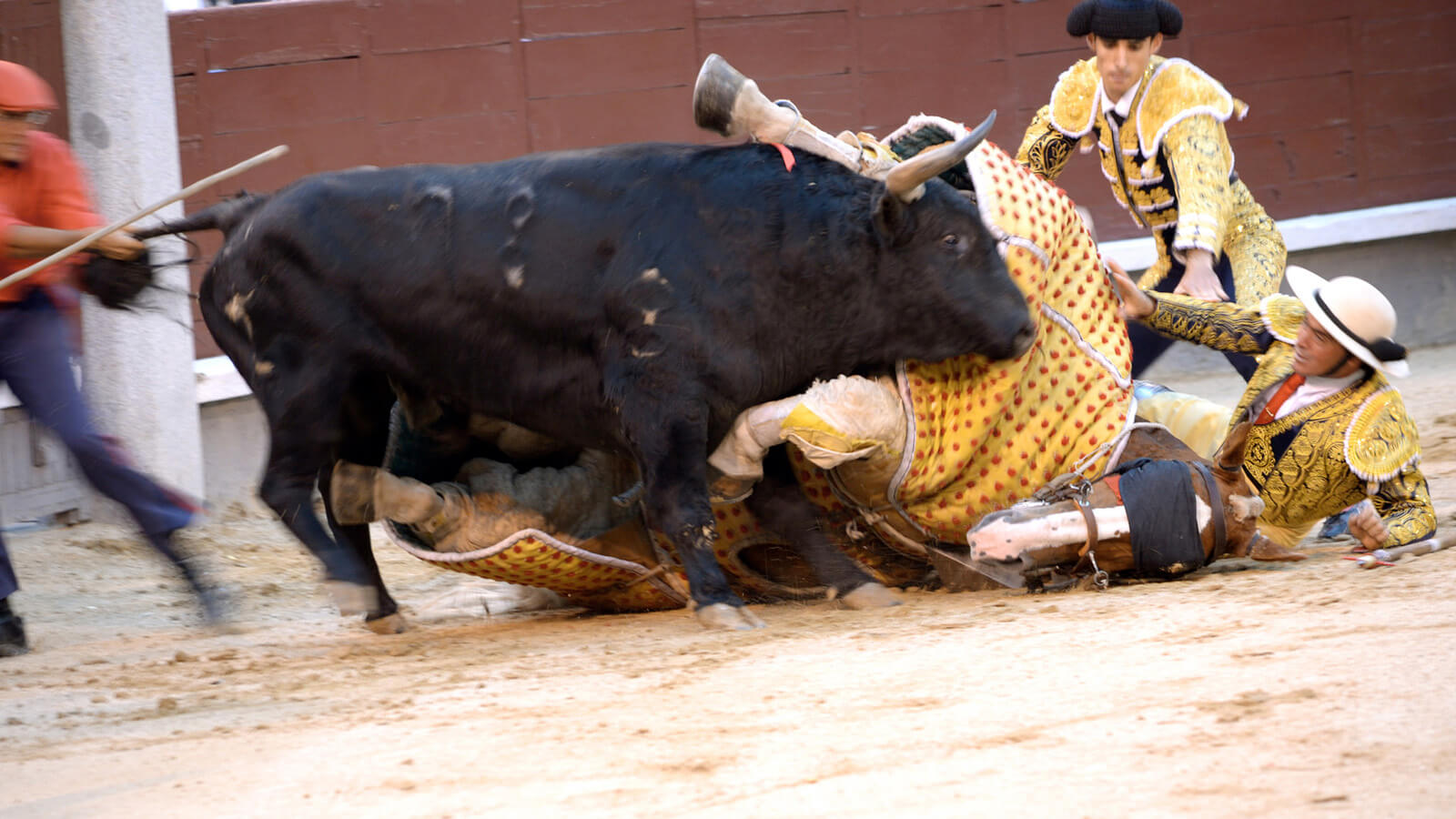 Bullfighting in Spain goes bad after the matador gets attacked by the bull