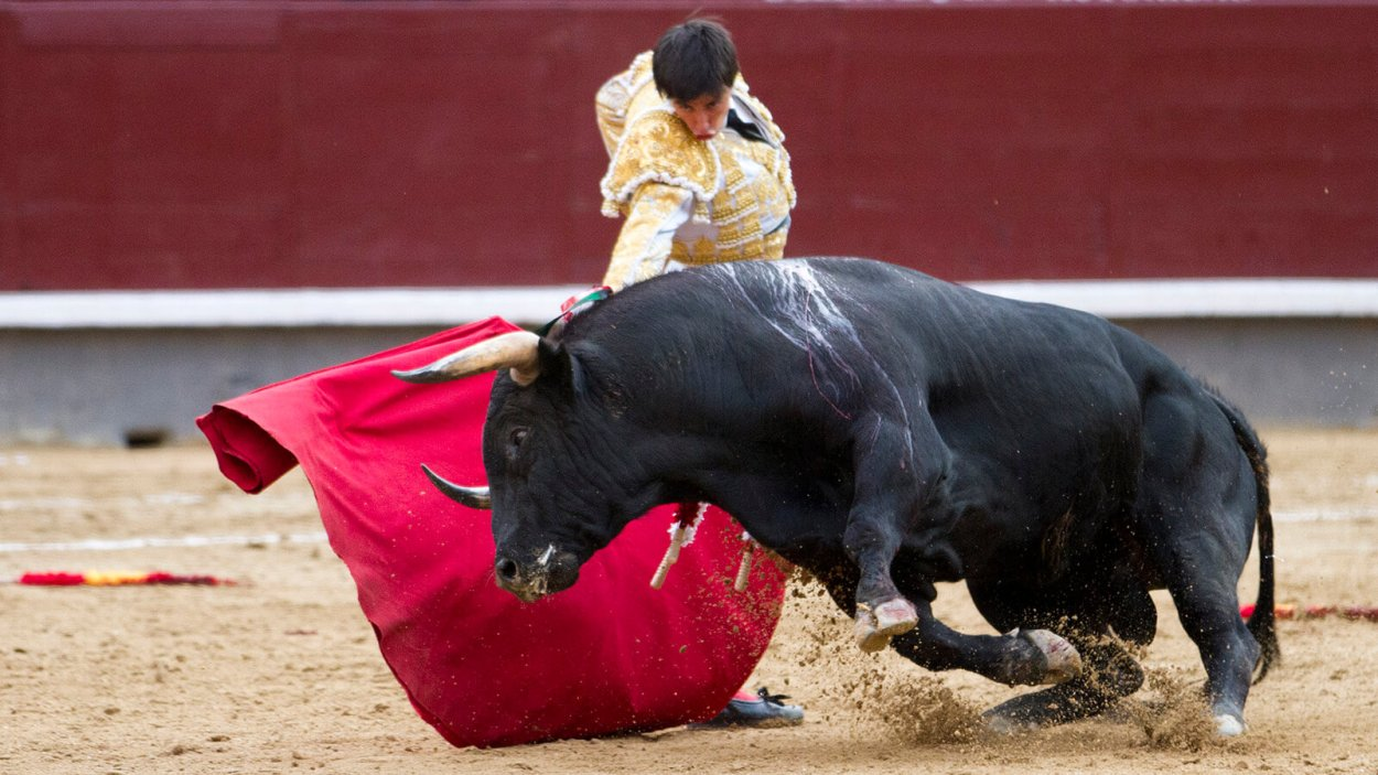 My first experience bullfighting in Spain