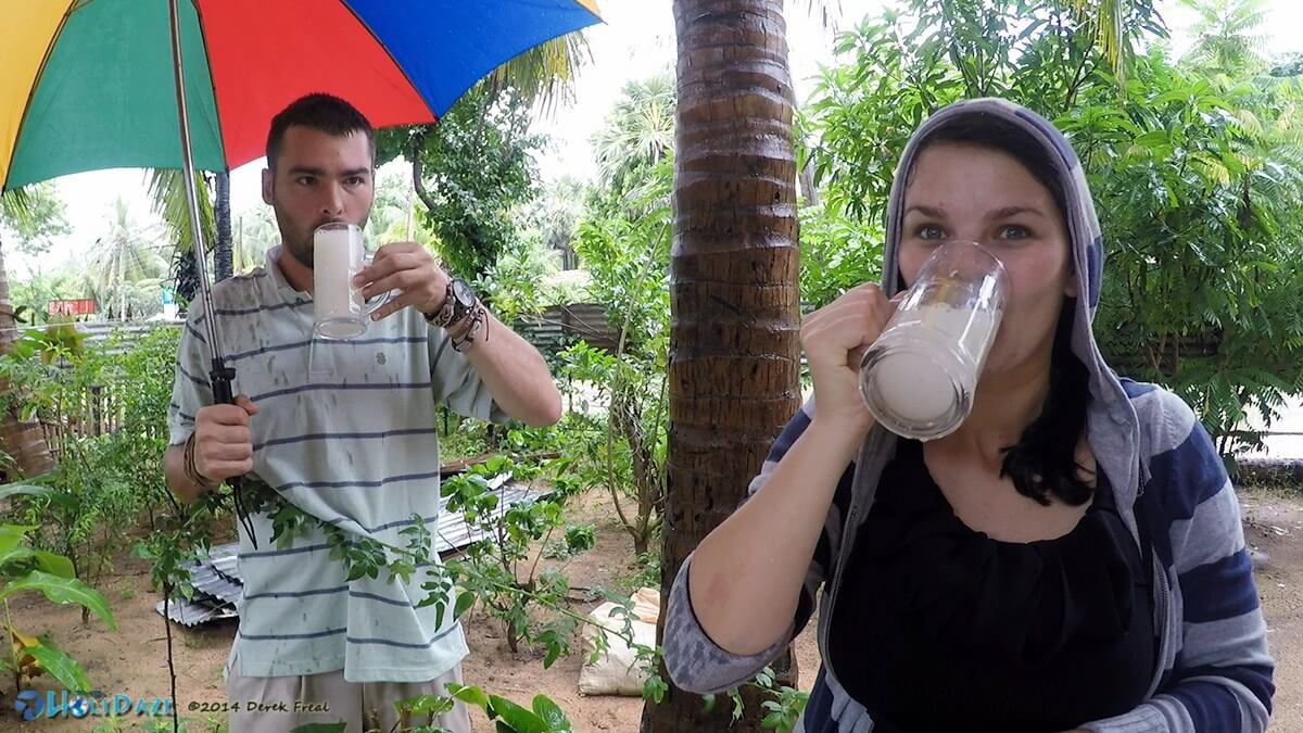 Drinking toddy in Trincomalee, Sri Lanka