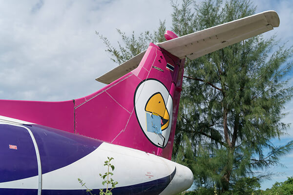 Nok Air plane HS-TRB abandoned in the woods near Mae Rumphueng Beach in Rayong, Thailand.