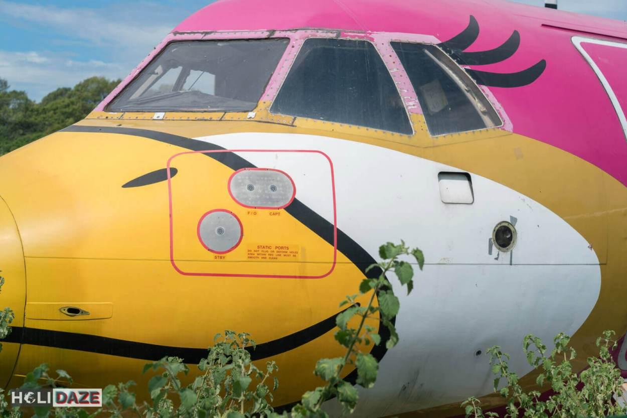 Cockpit of Nok Air plane registration code HS-TRB. It's currently being overgrown by nature in Rayong, Thailand