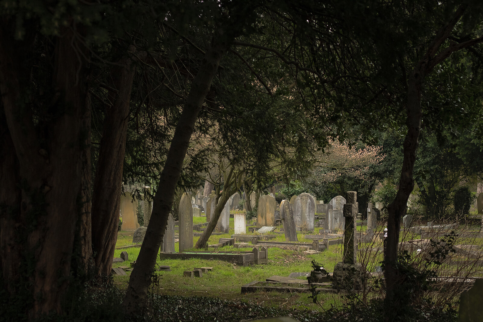 Experience the offbeat Nashville by exploring a cemetery and searching for famous graves