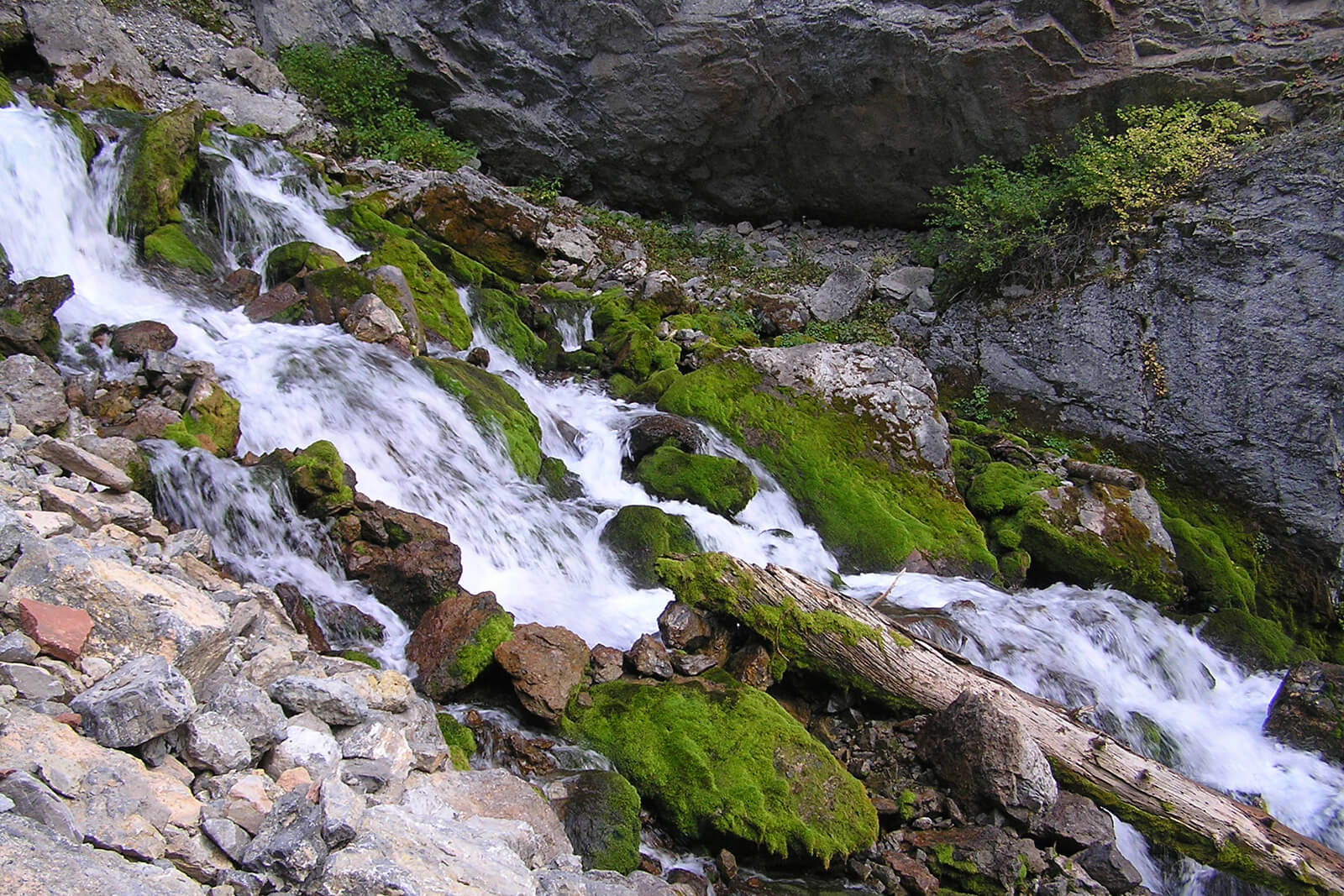 Intermittent Spring, a rare natural formation that starts and stops on its own -- one of the unique and offbeat things to do in Jackson, Wyoming