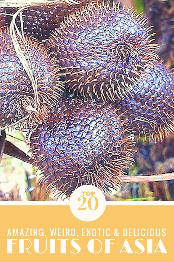 20 delicious fruits to try while traveling Asia that you probably have never heard of! #travel #asia #food #fruit #traveltips #travelguide #foodie #southeastasia #budgettravel #foodguide