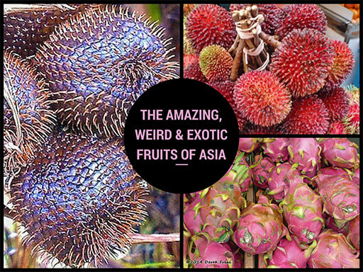 Amazing weird exotic and delicious fruits of Asia