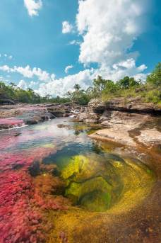 The rainbow-colored Caño Cristales River in Colombia