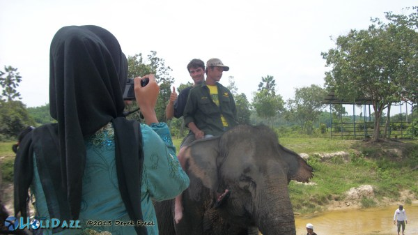 Elephant Ridin'