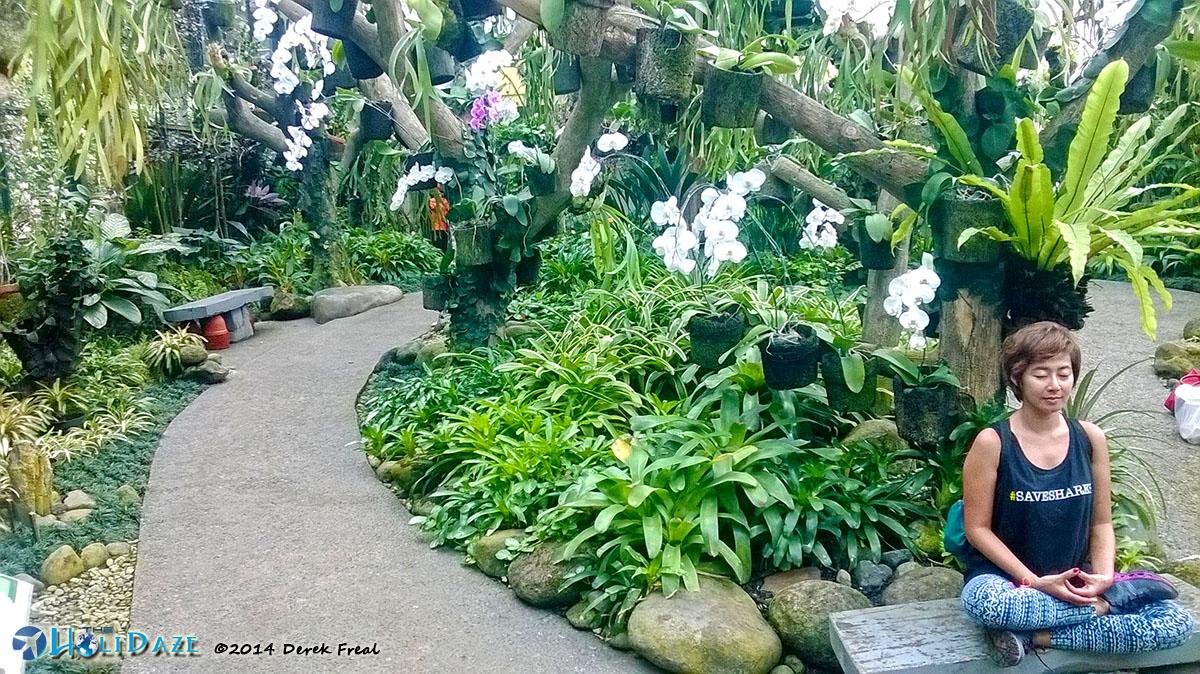 Riyanni Djangkaru @ Rumah Anggrek Kebun Raya Bogor