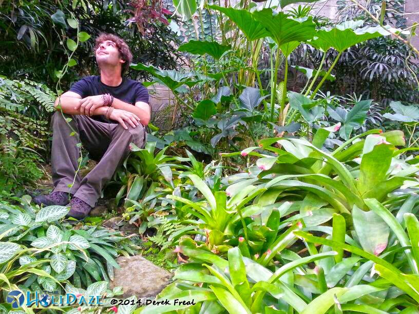 Frifotos: Derek Freal In Solitude At Bogor Botanical Gardens, Indonesia