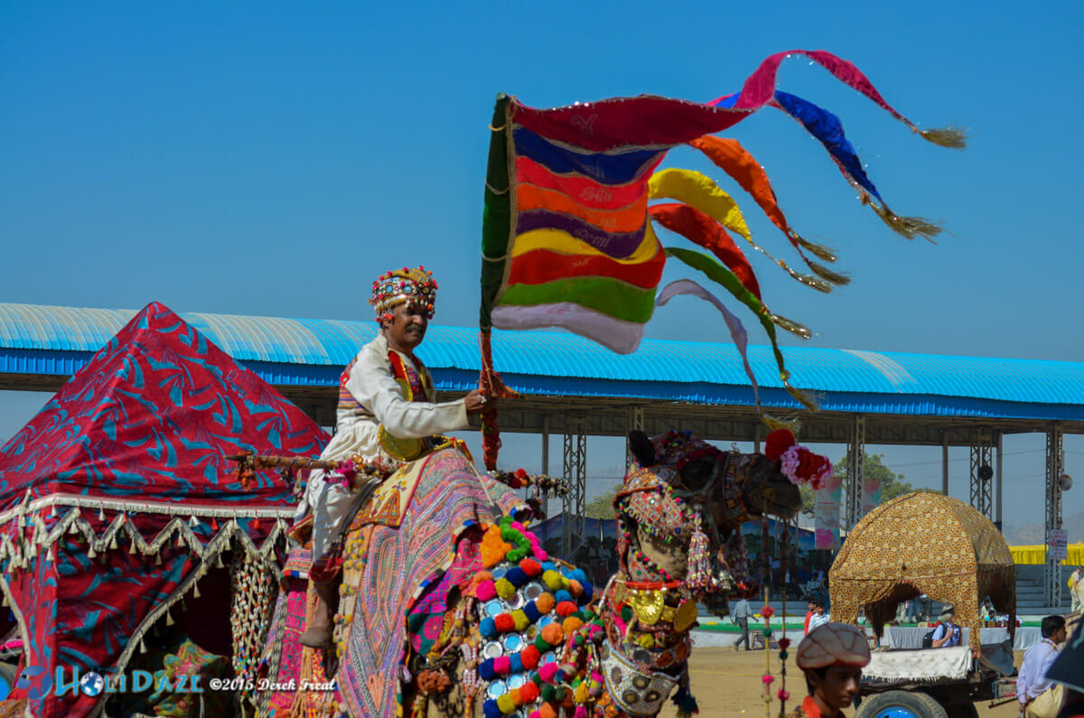 50 Colorful Photos From The Pushkar Camel Fair