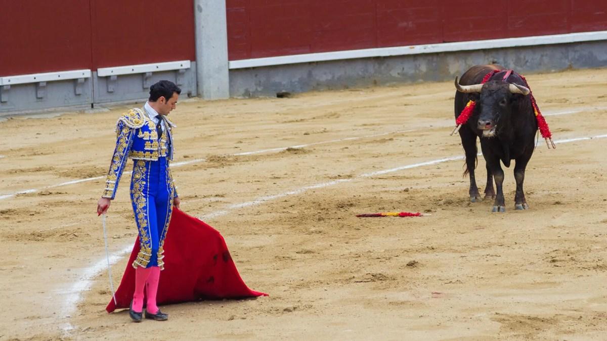 Grab The Bull By The Horns! Bullfighting in Spain