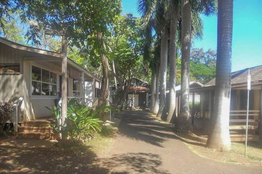Houses for immigrant workers at Hawaii Plantation Village, one of the unique, offbeat things to do in Honolulu