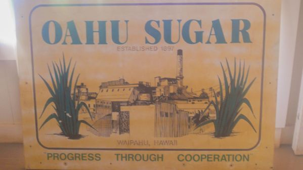 Oahu Sugar, established in 1897 at Hawaii Plantation Village, one of the unique, offbeat Honolulu activities