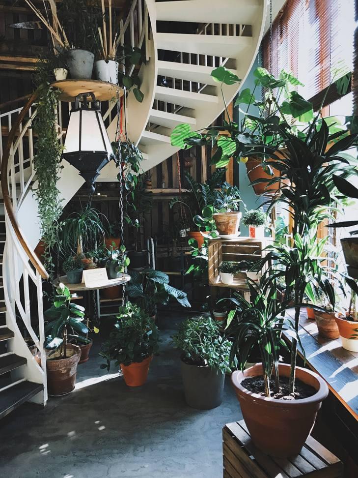 Indoor garden in Berlin, Germany