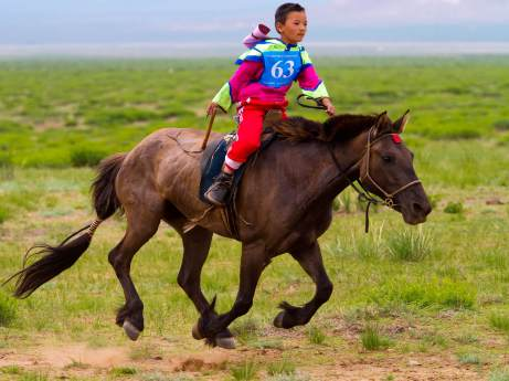 Young child riding a horse very fast at Naadam festival in Ulaanbaatar, Mongolia