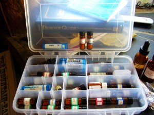 my travel remedy kit is a converted tackle box - ready to go!