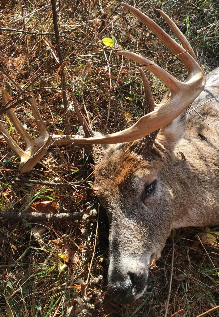 Things to Do in Western PA: Hunt!