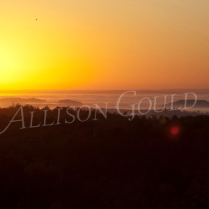 Above the Fog Sunrise Wall Decor