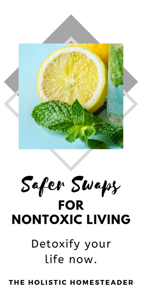 Safer Swaps for Nontoxic Living