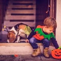 2016's Best Cities for Halloween