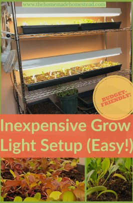 Inexpensive Grow Light Setup