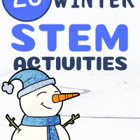 20 Winter STEM Activities!
