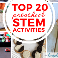 20 FUN Preschool STEM Activities!