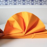 Diy Turkey Napkins For Your Thanksgiving Table The Homes I Have Made