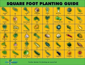 A Gardening Notebook  Thehomesteadingboards