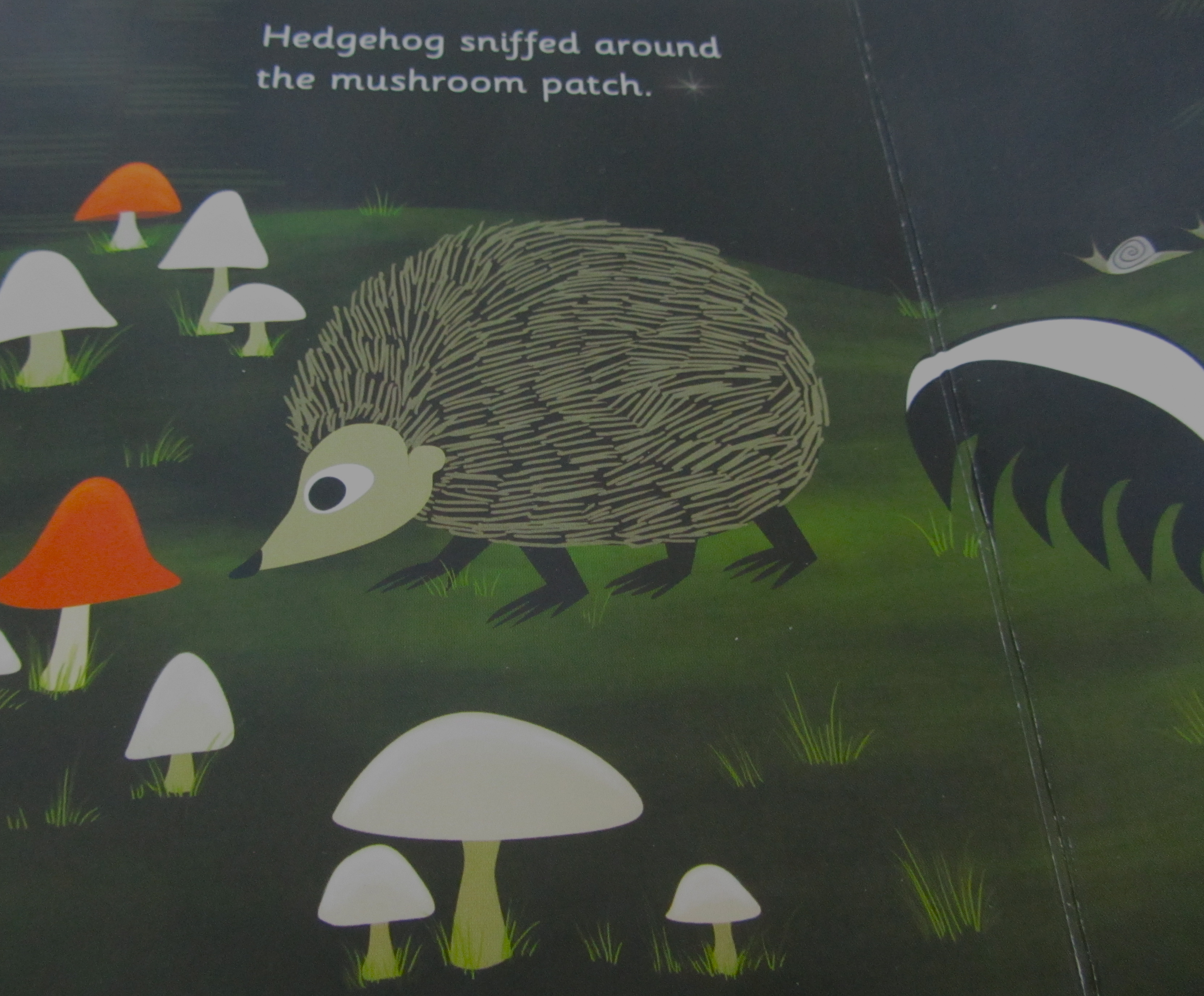 Top 5 Kid Books Featuring Mushrooms The Home Tome