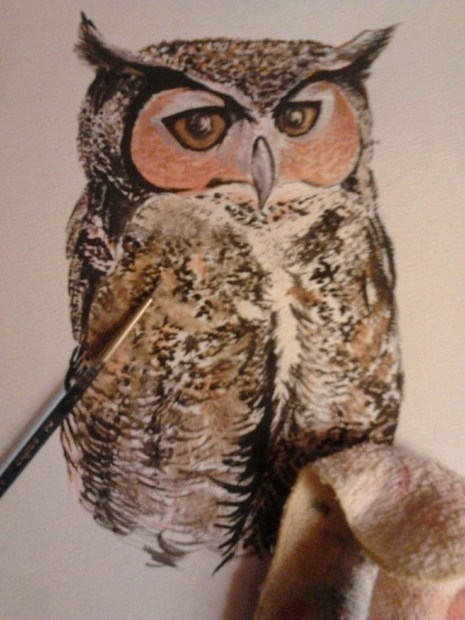 """""""Great Horned Owl"""" Watercolour on paper"""