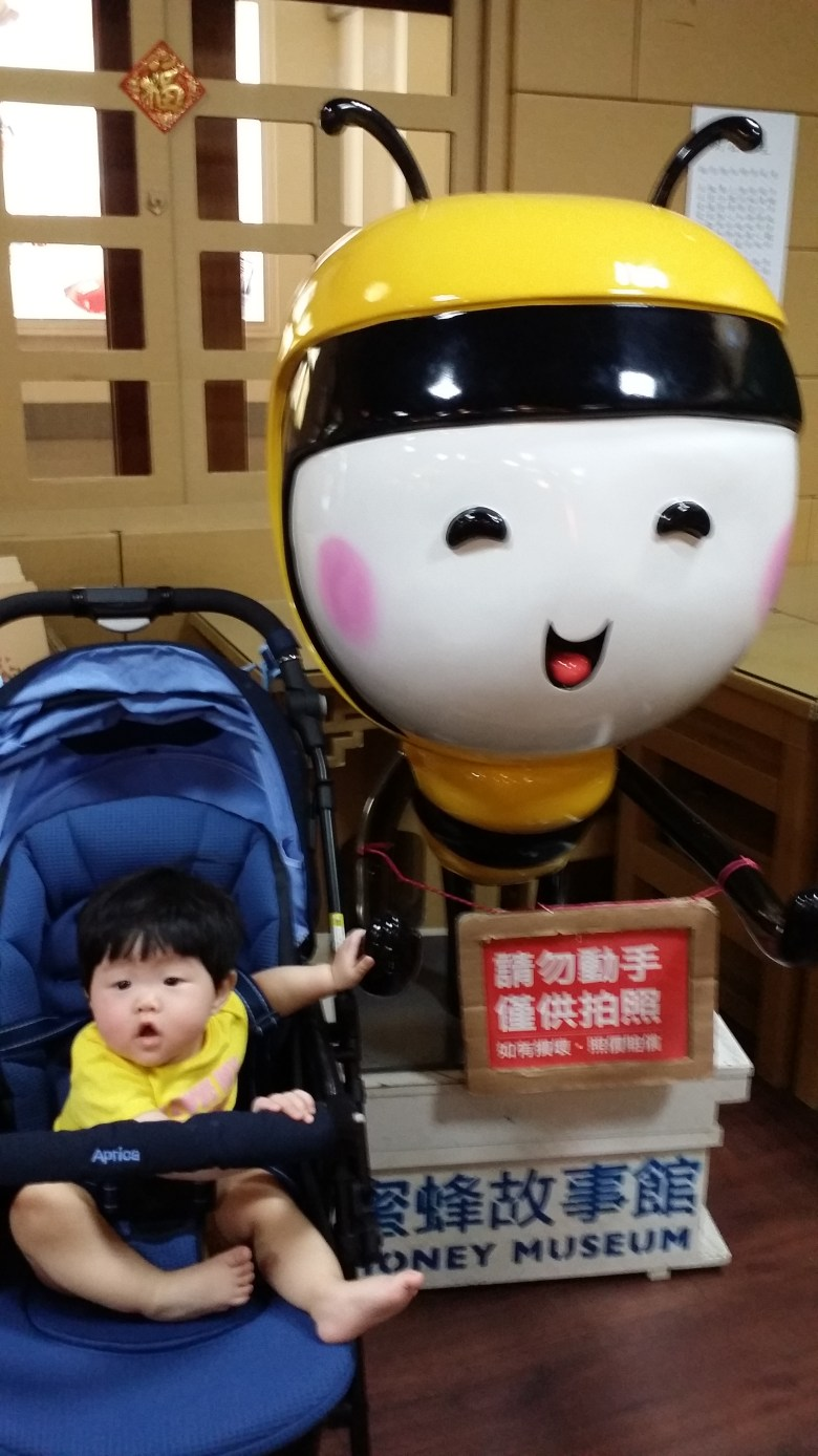 baby vera at honey museum taichung