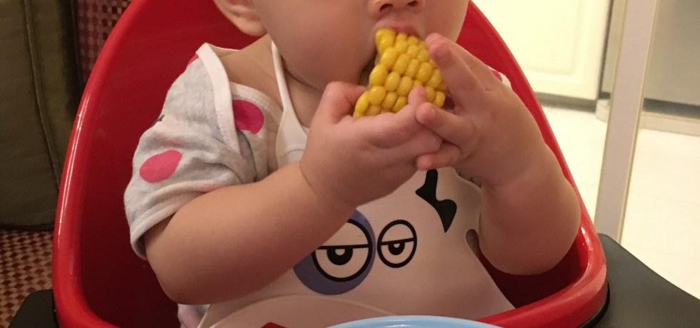 tips for baby led weaning quick and easy baby food recipes