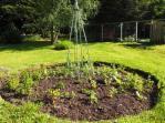Replanting herb circle