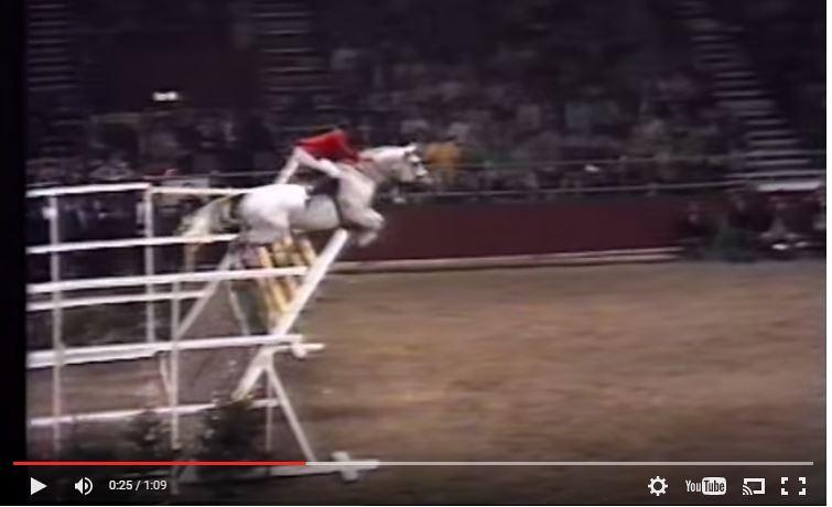 Amazing Video Nick Skelton On Lastic Jump Over 7 Feet 7
