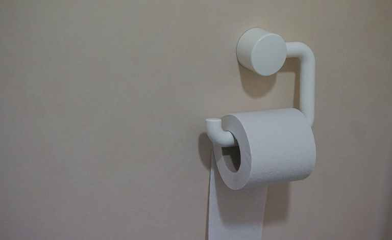 potty training tip, toilet paper on a roll