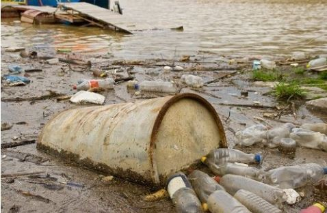 Toxic waste, dumped