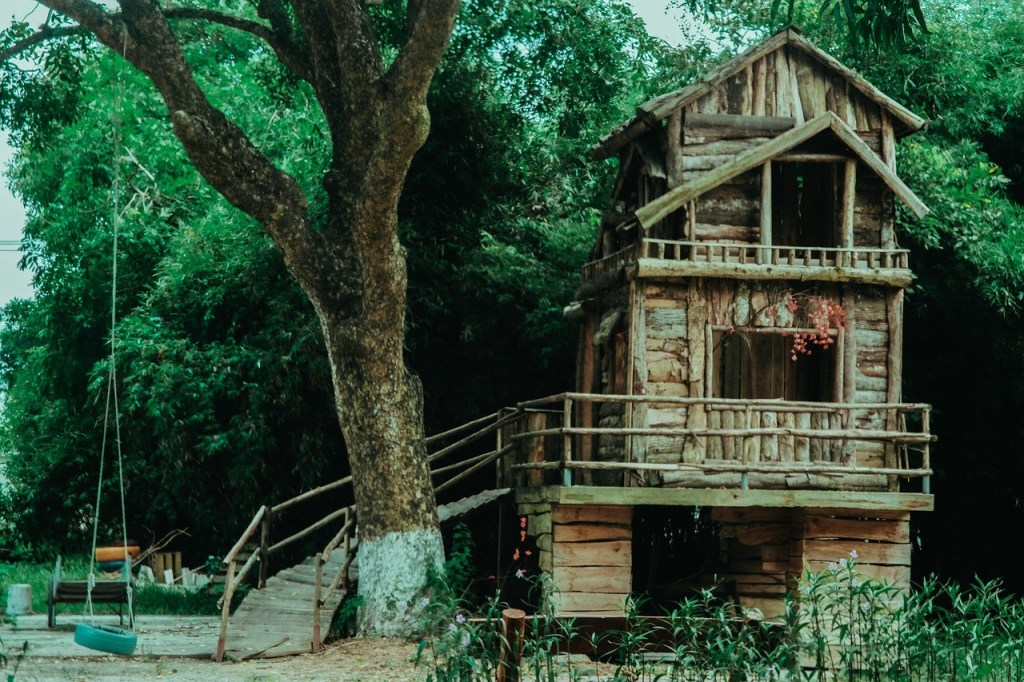 Tree, house