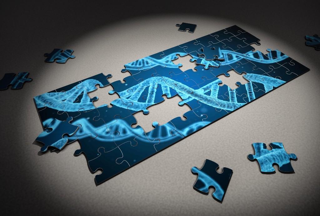DNA test, puzzle pieces