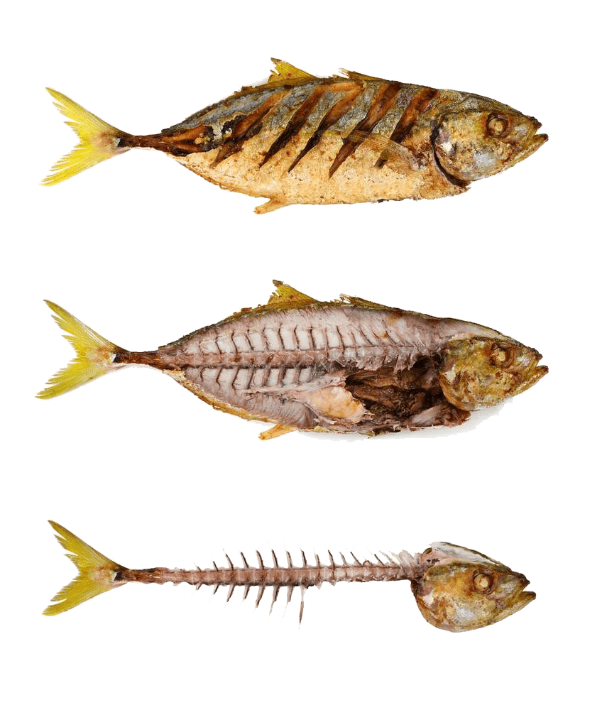 Fishes and fishbones