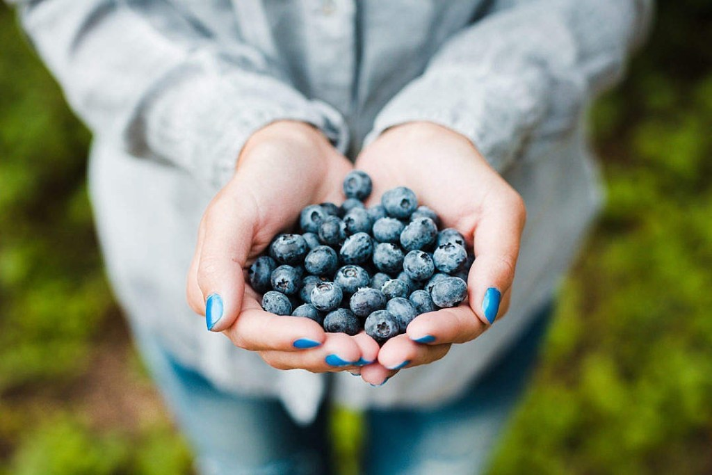 best foods to improve lungs, handful of blueberries