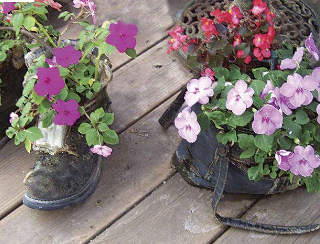 Closet planters