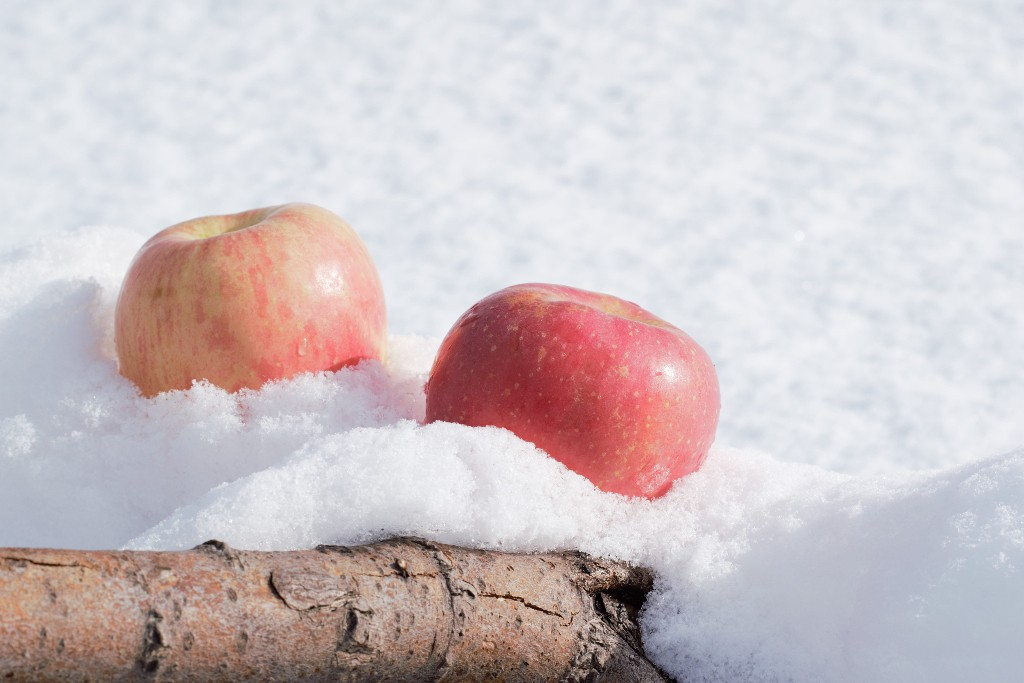 freezer, apples -- The Hot Mess Press