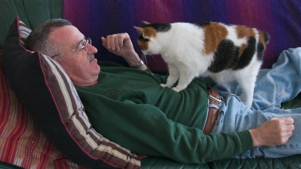Cat kneading man