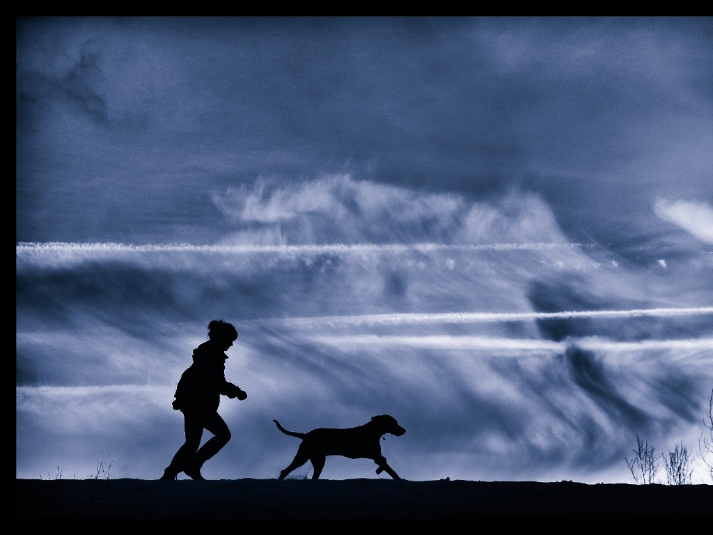 Pup and owner walking