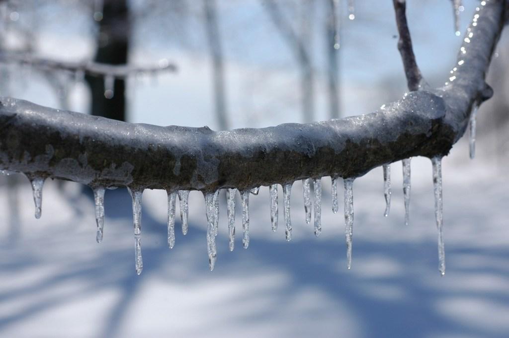 Snow -- The Hot Mess Press