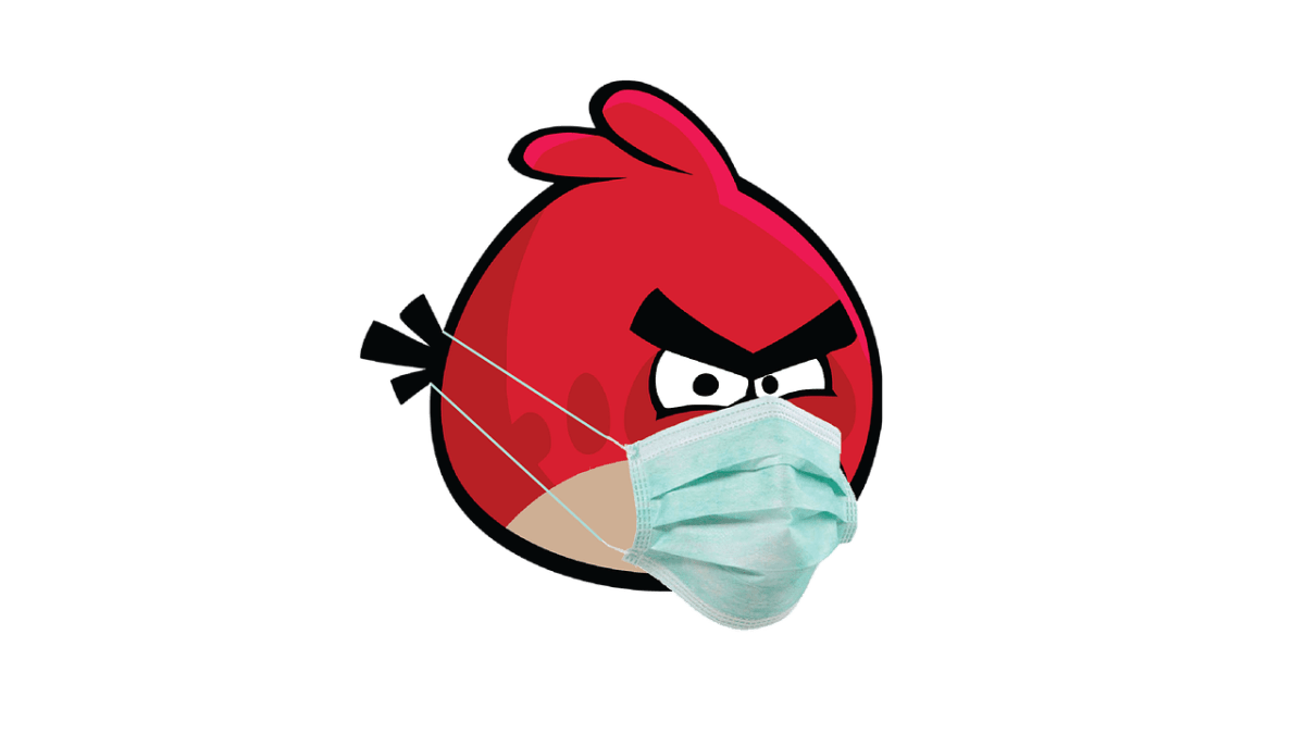 Angry bird with face mask