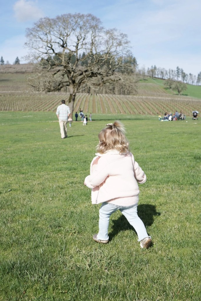 wine tasting, oregon wine, rosé, champagne, cheese board, wineries, dundee hills, travel oregon, pinot noir, Portland, pdx