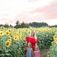 Sunflower Fields in Oregon