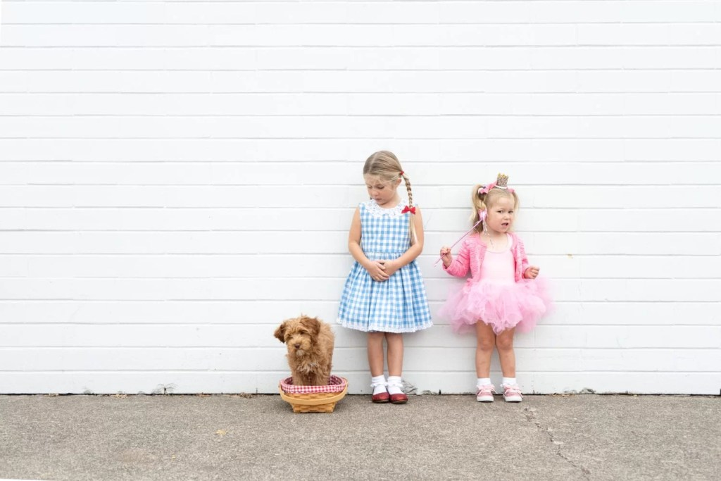Last Minute Dorothy And Glinda The Good Witch Diy Costumes